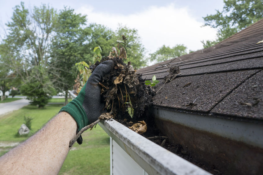 It's important to clean your gutters at least once a month to maintain the functionality of your roof.